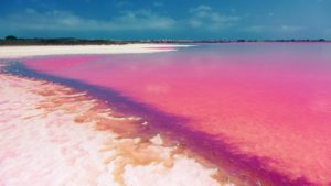 The pink lake -Torrevieja-Spain-1600x900